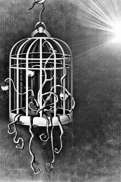 Caged Voices